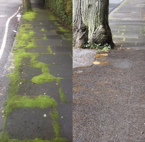 Moss Removal, Belfast